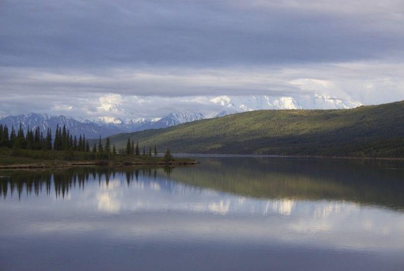 """Denali National Park and Preserve (Gregory """"Slobirdr"""" Smith/Flickr)"""