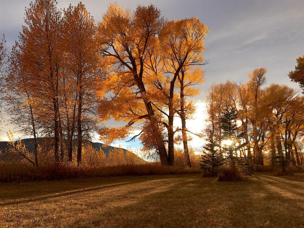 Wyoming   © Courtesy of Wyoming Tourism