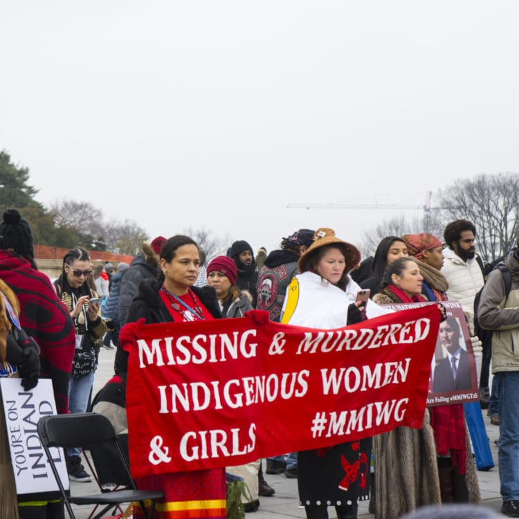 The People's Indigenous March in Washington D.C.
