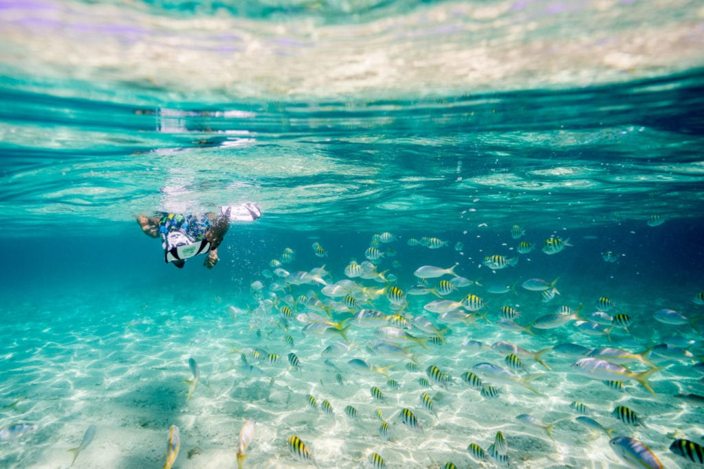 Snorkeling in the DR | © Nick Argires, The Dominican Republic Ministry of Tourism