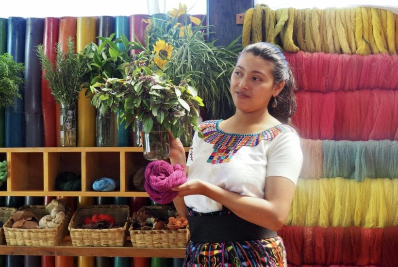 Johana of Casa Flor Ixcaco shows what plants are used for the natural dyes | © Nikki Vargas/Unearth Women